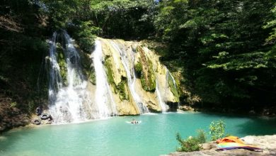 Photo of 7 Nature Spots in Metro Manila You Should Visit