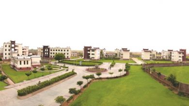 Photo of Why should you study an agriculture course from the best university in Rajasthan?